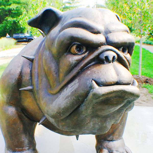 bulldog thumb th